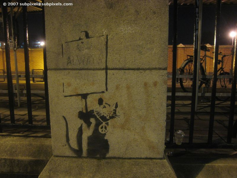 Banksy - Rat with Peace bling